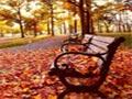 Herbst-Park Jigsaw
